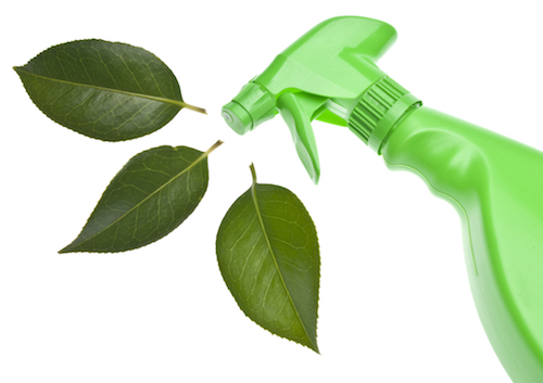 Green cleaning services in Lincoln, NE